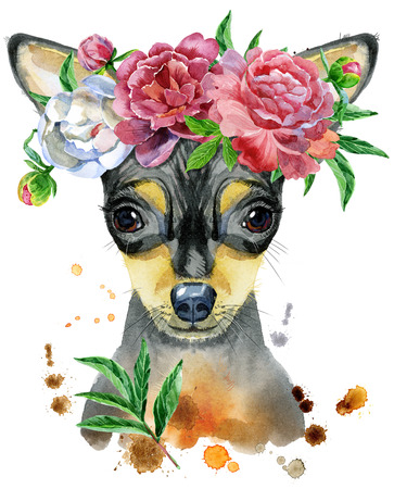 Cute Dog. Dog T-shirt graphics. watercolor toy terrier in a wreath of peonies illustration