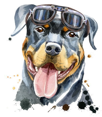 Cute Dog. Dog T-shirt graphics. Watercolor rottweiler with glasses