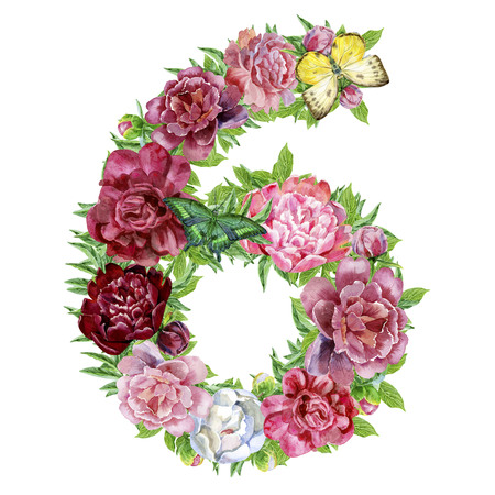Number six of watercolor flowers, isolated hand drawn on a white background, wedding design, english alphabet
