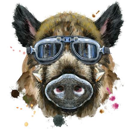 Cute piggy. Wild boar for T-shirt graphics. Watercolor brown boar illustration
