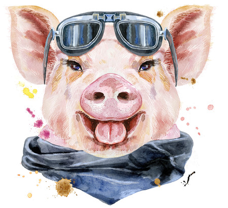Cute piggy. Pig for T-shirt graphics. Watercolor pink pig with biker sunglasses