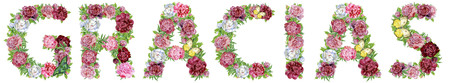 Word GRACIAS of watercolor flowers, isolated hand drawn on a white background, wedding design, english alphabet