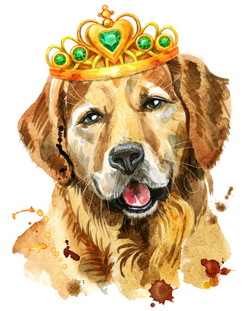 Watercolor portrait of golden retriever dog with crown 写真素材