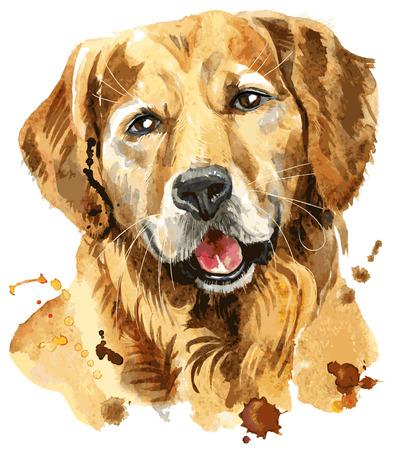 Cute Dog. Dog T-shirt graphics. Vector golden retriever illustration