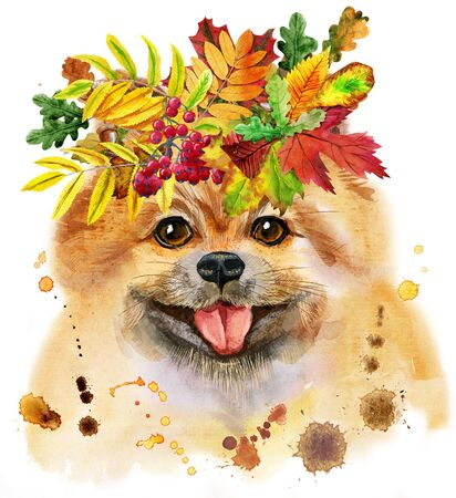 Watercolor portrait of dog pomeranian spitz with wreath of autumn leaves