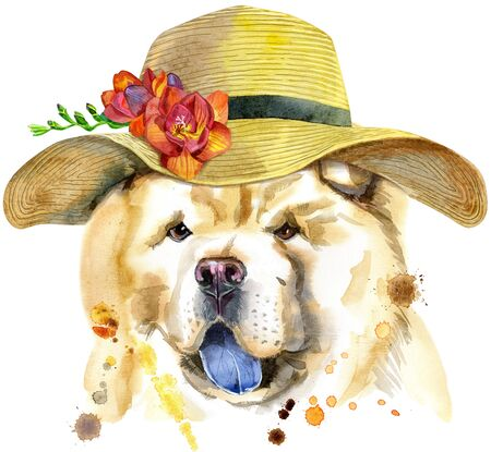 Cute Dog with a wide-brimmed summer hat. Dog T-shirt graphics. watercolor chow-chow dog illustration 写真素材