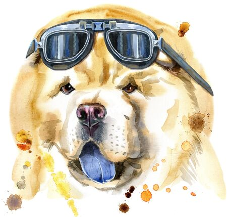 Cute Dog with biker sunglasses. Dog T-shirt graphics. Watercolor chow-chow dog illustration 写真素材