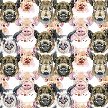 Seamless pattern of cute pigs for decoration Stok Fotoğraf