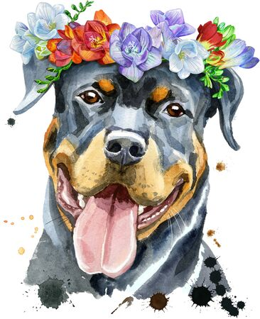 Watercolor portrait of rottweiler in a wreath of freesia 写真素材