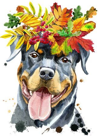 Watercolor portrait of rottweiler with wreath of autumn leaves 写真素材