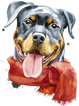 Watercolor portrait of rottweiler in a red scarf 写真素材