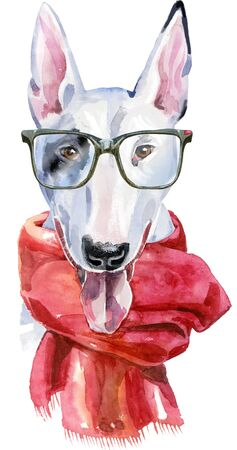 Watercolor portrait of bull terrier with glasses and a red scarf