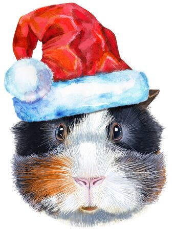 Cute cavy. Pig for T-shirt graphics. Watercolor abyssinian guinea pig with Santa hat illustration Zdjęcie Seryjne