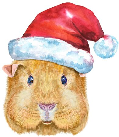 Cute cavy. Pig for T-shirt graphics. Watercolor English Self guinea pig with Santa hat illustration
