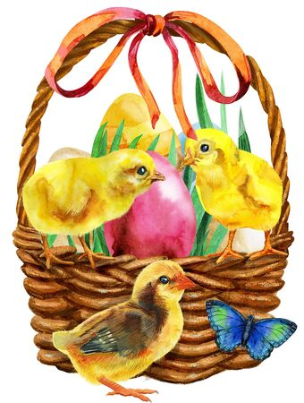 Waterciolor illustration of an Easter basket filled with eggs and yellow chickens