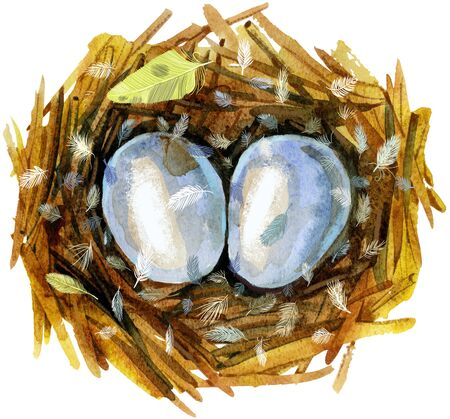 Nest with eggs. Painted with watercolors on white background. Spring decoration. Decorating for Easter. 写真素材