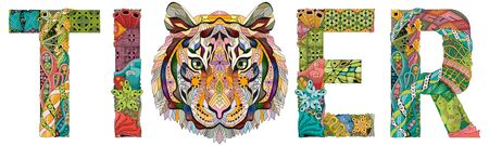 Hand-painted art design. Hand drawn illustration word tiger for t-shirt and other decoration