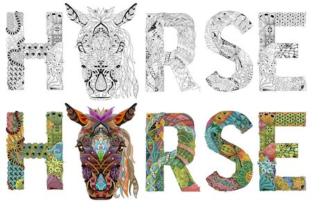 Hand-painted art design. Hand drawn illustration word horse for t-shirt and other decoration