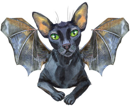 Watercolor cat with bat wings. Hand drawn black short hair pet on white background.