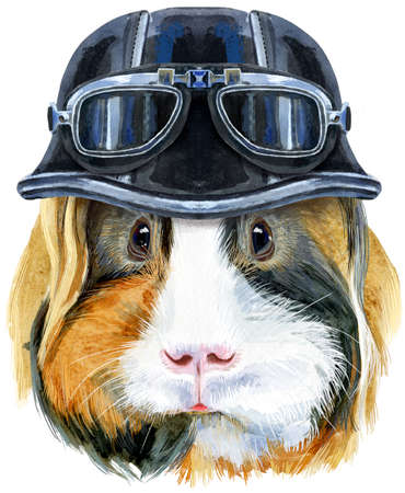 Cute cavy. Pig for T-shirt graphics. Watercolor Sheltie Guinea Pig with biker helmet illustration 写真素材