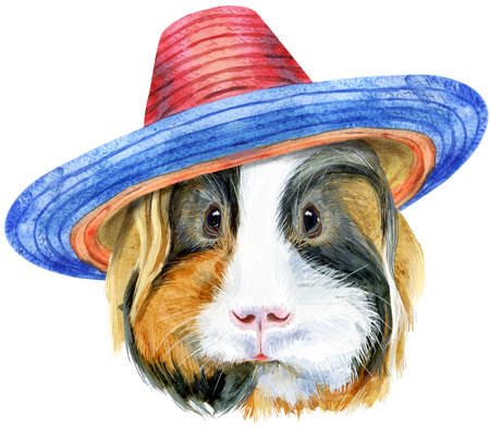 Watercolor portrait of Sheltie guinea pig in sombrero hat on white background 写真素材