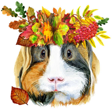 Watercolor portrait of Sheltie guinea pig with wreath of leaves on white background 写真素材