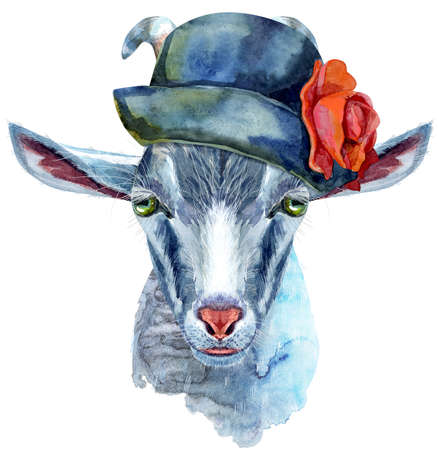 Goat head with gray hat isolated on white background. Archivio Fotografico
