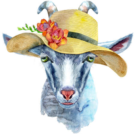 Goat head in summer hat isolated on white background. Goat watercolor illustration.