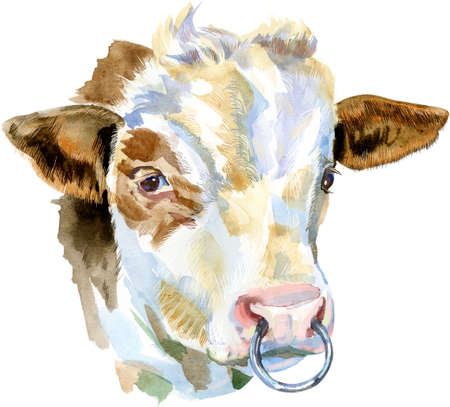 Bull watercolor graphics. Bull animal illustration watercolor textured background.