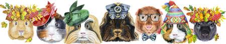 Cute cavy. Pig for T-shirt graphics. Watercolor guinea pigs border set 免版税图像