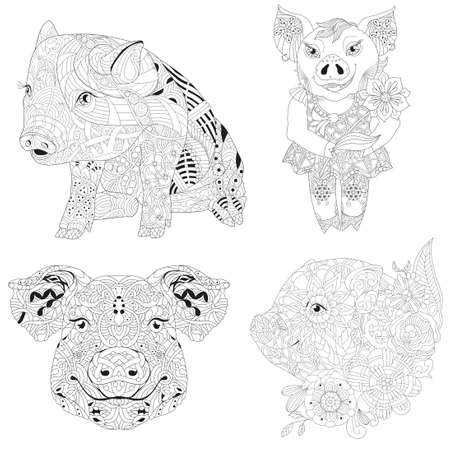Design illustration with pigs. doodle piglet. Domestic animal for coloring.