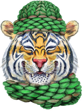 Colorful orange smiling tiger a tiger in a knitted green hat. Wild animal watercolor illustration on white background 免版税图像