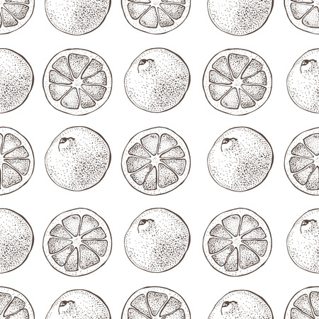 Vector seamless pattern with ink hand drawn citrus fruit, slices and leaves sketch. Mandarin orange, tangerine, lime isolated on white background. Detailed vegetarian food illustration