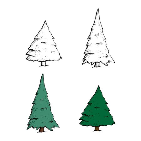 Vector Set of Hand Drawn Sketch Pine Trees. Cartoon spruce isolated on a white background. Christmas design elements, doodle style.