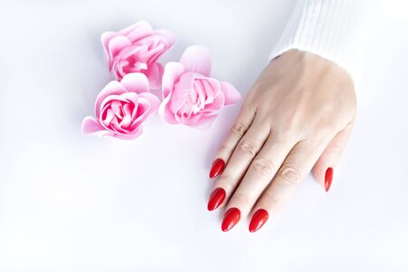 Red fashion manicure on delicate female hands. Hands of a beautiful young woman on a white isolated background with pink flowers. View from above.