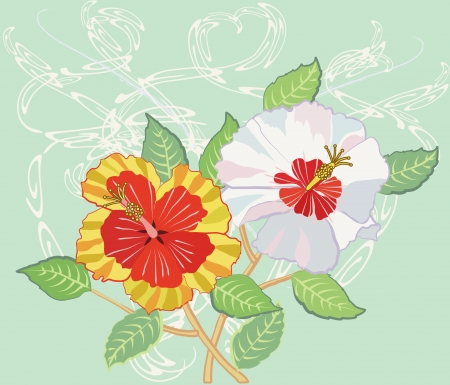 Bouquet of Hibiscus on Light Green Background  Vector