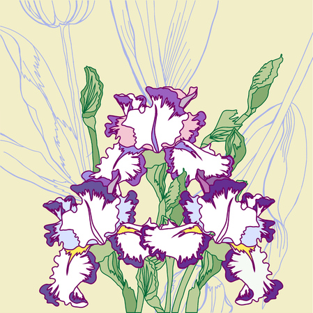 Background with white blue irises  Vector illustration Vector
