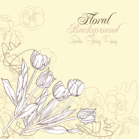 pansies: Floral Background with pansies and tulips.Vector Illustration