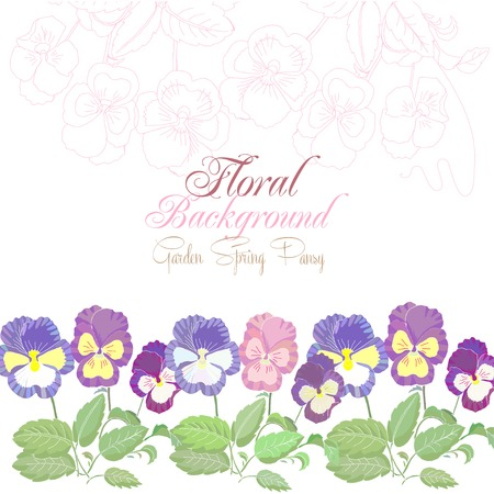 Floral Background with spring pansies. Vector Illustration