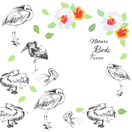 Background with birds.Vector Illustration Vector
