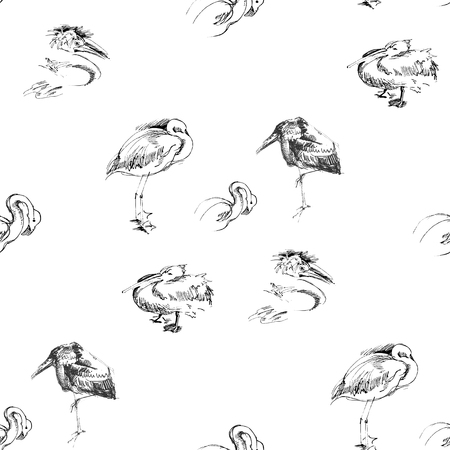 Seamless background with birds.Vector Illustration Vector