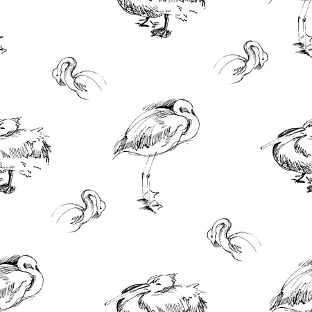 Seamless background with birds Illustration Vector