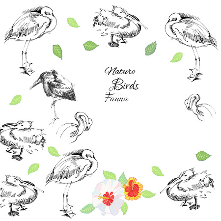 Background with birds Illustration Vector