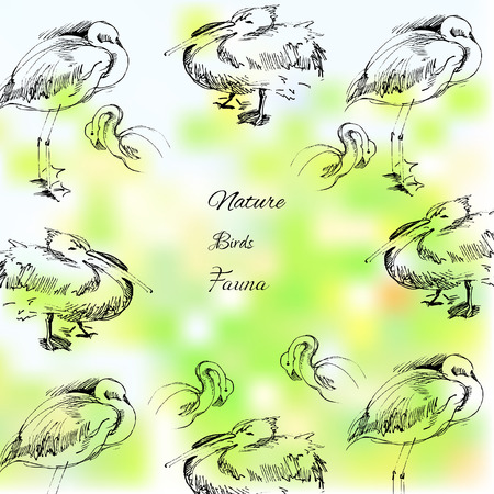 Background with birds. Vector  nature Illustration Vector