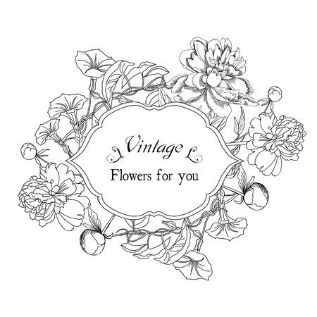 bindweed: Vintage card with bindweed and flowers.Hand drawn flowers of bindweed and  peonies. Vector illustration
