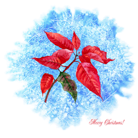 Background with Christmas poinsettia. Vector watercolor illustration