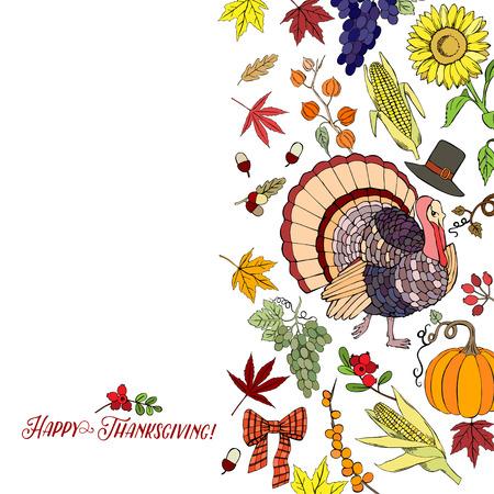 corn flower: Thanksgiving day. Background with hand drawn elements. Pumpkin, turkey, harvest, sunflower, autumn. Vector Illustration Illustration