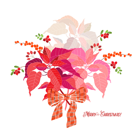 Background  with bouquet of poinsettia. Vector  illustration