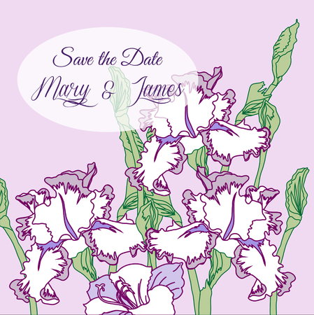 pattern flower: Wedding background with three irises. Vector illustration Illustration
