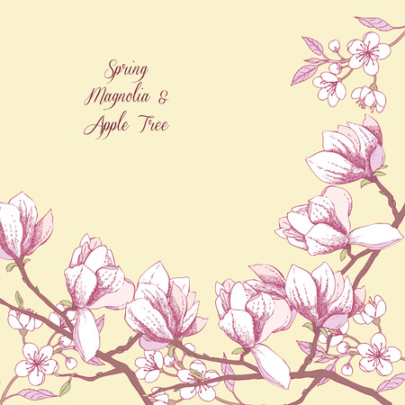 arbol de pascua: Background with magnolia and apple tree. Hand drawn spring flowers. Vector illustration